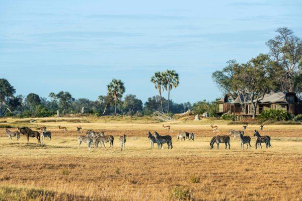 BukelaAfrica-DecNews-08