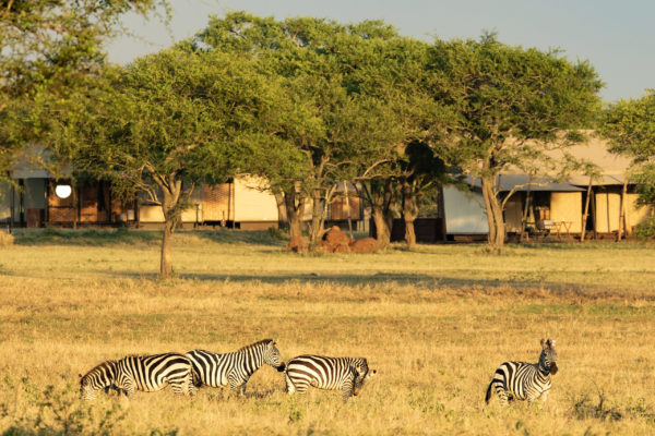 BukelaAfrica-DecNews-17